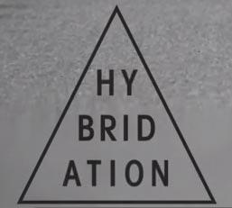 "logo Vidéo ""HYBRIDATION"" de ©Fred Mortagne"