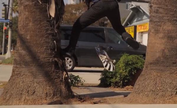 skateboarder Richie Jakson : ollie tré flip step