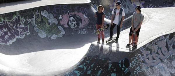 d street bomber skateboard longboard CRUISER