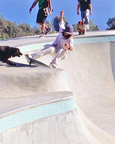 abcskate-skate-blog-biographie-skateur-pro-tony-alva